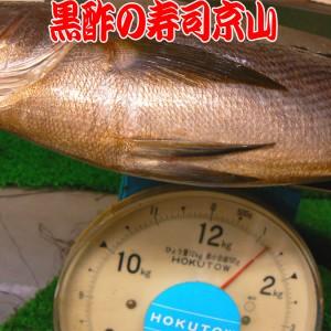 赤坂 寿司 出前 西麻布