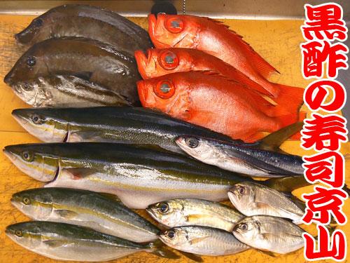 墨田区で宅配寿司屋を初めて18年。お寿司の出前はおまかせください。