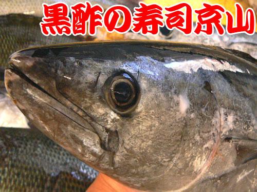 江東区 寿司 出前 潮見