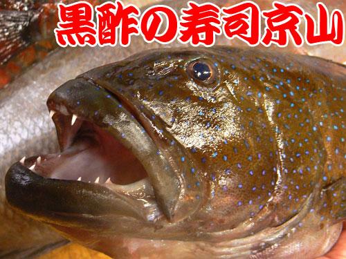 納会 寿司 出前 神田佐久間河岸