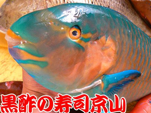 千代田区 宅配寿司 神田錦町