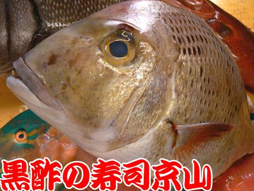 千代田区 宅配寿司 神田駿河台