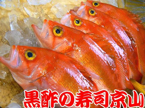 中央区 宅配寿司 日本橋室町