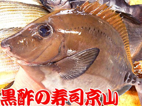 江東区 寿司 出前 三好