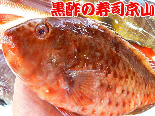 大塚 寿司 配達