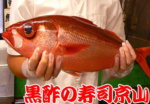 小石川 寿司 配達