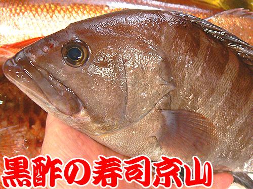 湯島 寿司 配達