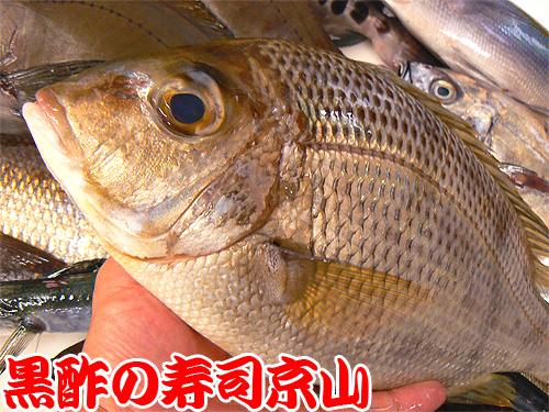 千代田区 宅配寿司 平河町