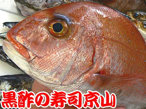 江東区 宅配寿司 高橋