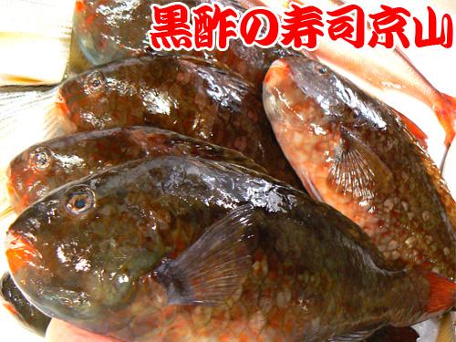 台東区 宅配寿司 北上野
