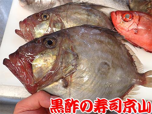 寿司 出前 台東区花川戸