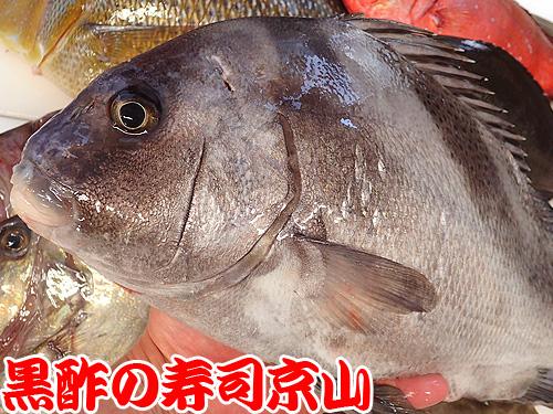 寿司 出前 台東区西浅草