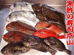 和歌山県串本港からの魚