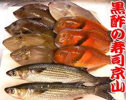 出前用 天然地魚 寿司