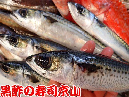 宅配寿司 江戸川区 西篠崎