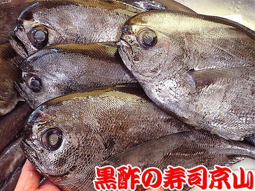 宅配寿司 千代田区 猿楽町