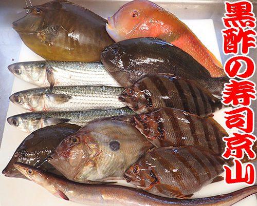 美味しい 宅配寿司 葛飾区 新小岩