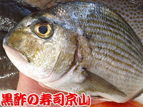 美味しい宅配寿司 江東区 永代