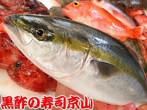美味しい宅配寿司 台東区 今戸