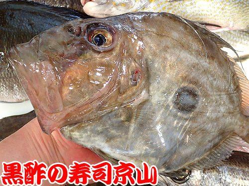美味しい宅配寿司 江東区 青海