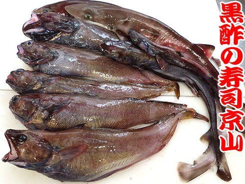 深海魚のお寿司 下田産