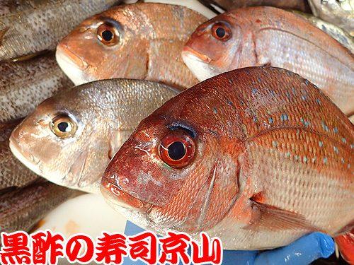 美味しい寿司 出前 江東区 白河