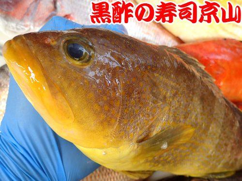 美味しい寿司 出前 江東区 潮見