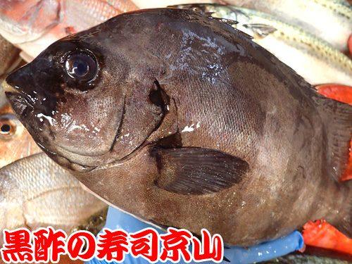 美味しい寿司 出前 江東区 猿江