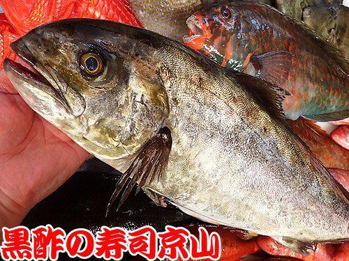 美味しい宅配寿司 江戸川区 上一色