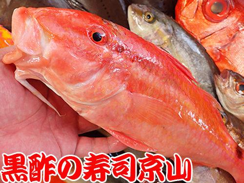 墨田区 横網 宅配寿司 年末年始 出前