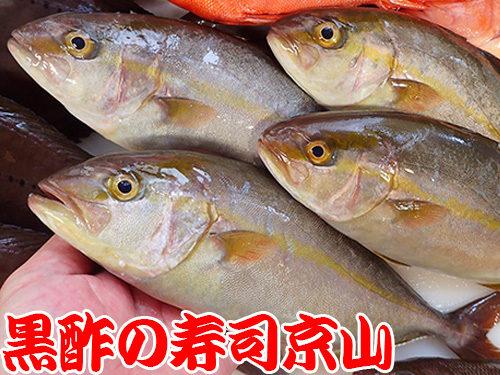 墨田区 本所 宅配寿司 年末年始 出前