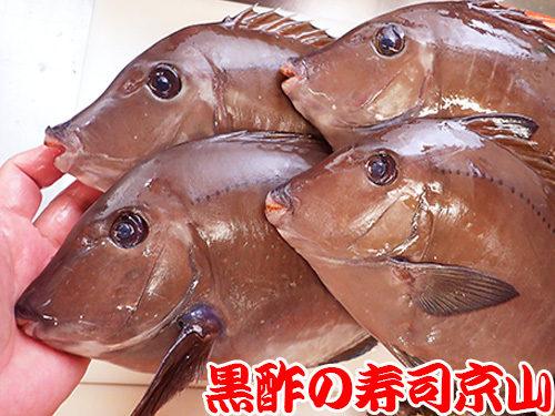 墨田区 石原 宅配寿司 年末年始 出前